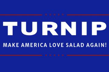 Turnip logo